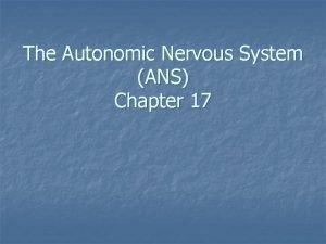 The Autonomic Nervous System ANS Chapter 17 Autonomic