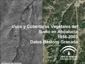 Usos y Coberturas Vegetales del Suelo en Andaluca