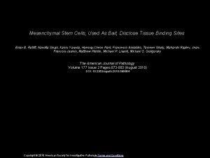 Mesenchymal Stem Cells Used As Bait Disclose Tissue