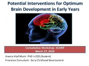 Potential Interventions for Optimum Brain Development in Early