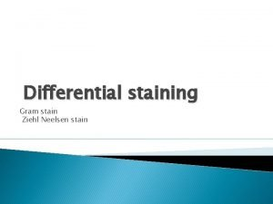 Differential staining Gram stain Ziehl Neelsen stain Differential