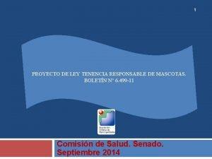 1 PROYECTO DE LEY TENENCIA RESPONSABLE DE MASCOTAS
