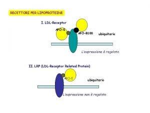 RECETTORI PER LIPOPROTEINE I LDLReceptor APOE APOB 100