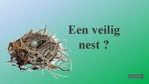 Een veilig nest Gebruikte symbolen Ga naar mijn