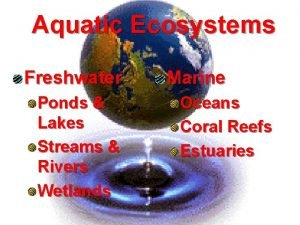 Aquatic Ecosystems Freshwater Ponds Lakes Streams Rivers Wetlands