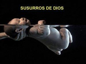 SUSURROS DE DIOS www vitanoblepowerpoints net UN HOMBRE
