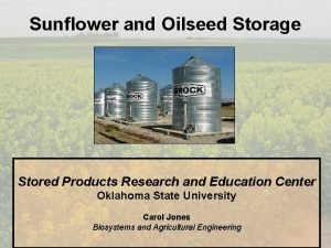 Sunflower and Oilseed Storage Stored Products Research and