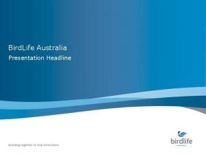 Bird Life Australia Presentation Headline Bird Life Australia