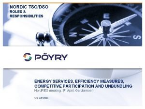 NORDIC TSODSO ROLES RESPONSIBILITIES ENERGY SERVICES EFFICIENCY MEASURES