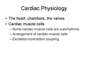 Cardiac Physiology The heart chambers the valves Cardiac