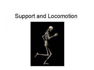Support and Locomotion Support and Locomotion Organisms that