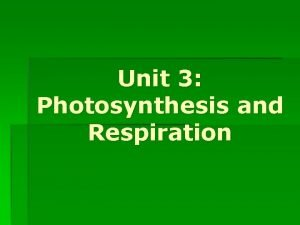 Unit 3 Photosynthesis and Respiration PART 1 Photosynthesis