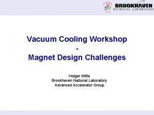 Vacuum Cooling Workshop Magnet Design Challenges Holger Witte