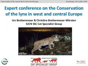 Conservation of the Lynx in West and Central