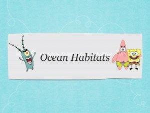 Ocean Habitats Ocean Zones Intertidal Zone Neritic Zone