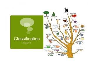 Classification Chapter 18 How are living things organized