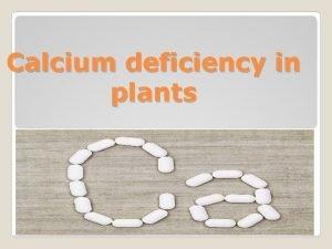 Calcium deficiency in plants Outline Calcium deficiency Definition