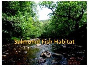 Salmonid Fish Habitat Applications of habitat data to