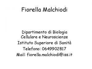 Fiorella Malchiodi Dipartimento di Biologia Cellulare e Neuroscienze