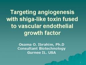 Targeting angiogenesis with shigalike toxin fused to vascular