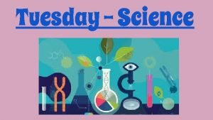 Tuesday Science Our new Science unit is called