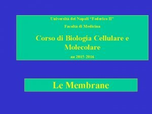 Universit dei Napoli Federico II Facolt di Medicina