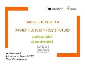 BADGE COLLGIAL CA PROJET PILOTE ET PROJETS FUTURS