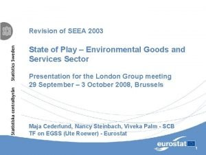 Revision of SEEA 2003 State of Play Environmental