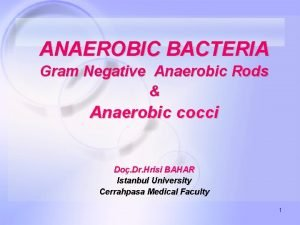 ANAEROBIC BACTERIA Gram Negative Anaerobic Rods Anaerobic cocci