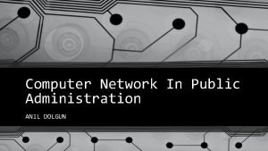 Computer Network In Public Administration ANIL DOLGUN The