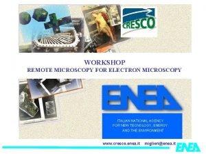 WORKSHOP REMOTE MICROSCOPY FOR ELECTRON MICROSCOPY ITALIAN NATIONAL