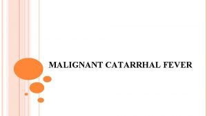 MALIGNANT CATARRHAL FEVER Synonyms Malignant Catarrhal fever Malignant