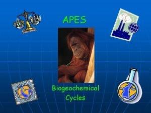 APES Biogeochemical Cycles Nutrient Cycling Biogeochemical Cycles n