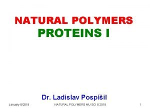 NATURAL POLYMERS PROTEINS I Dr Ladislav Pospil January