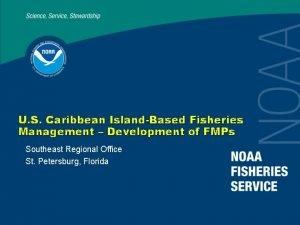 U S Caribbean IslandBased Fisheries Management Development of