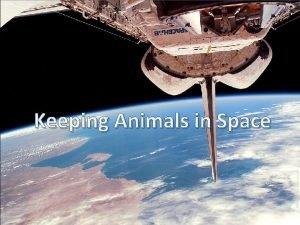 Keeping Animals in Space Habitat An animals habitat