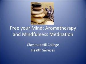 Free your Mind Aromatherapy and Mindfulness Meditation Chestnut
