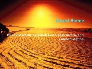 Desert Biome By Zak Mac Murray Jakob Conn