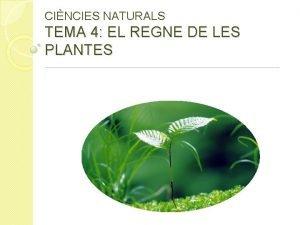 CINCIES NATURALS TEMA 4 EL REGNE DE LES