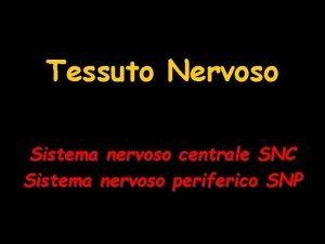 Tessuto Nervoso Sistema nervoso centrale SNC Sistema nervoso