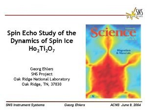 Spin Echo Study of the Dynamics of Spin