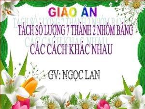 II Chun b C 7 con Ong trn