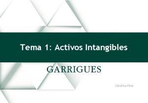Tema 1 Activos Intangibles Carolina Pina OTRAS MARCAS