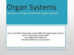Organ Systems Human vs Other Vertebrate Organ Systems