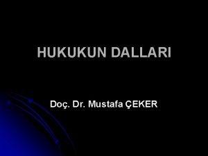 HUKUKUN DALLARI Do Dr Mustafa EKER HUKUKUN DALLARI