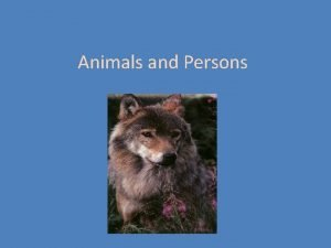 Animals and Persons Ethical status for animals Kantian