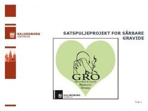 SATSPULJEPROJEKT FOR SRBARE GRAVIDE Side 1 UDMNTNING AF