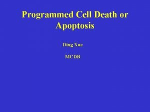 Programmed Cell Death or Apoptosis Ding Xue MCDB