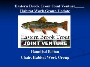 Eastern Brook Trout Joint Venture Habitat Work Group