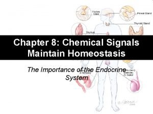 Chapter 8 Chemical Signals Maintain Homeostasis The Importance